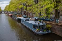 Viviendo en el canal