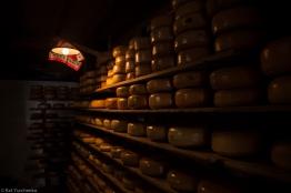 Queso, mucho delicioso queso